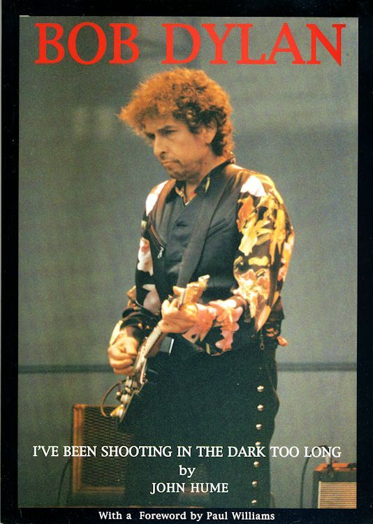 i've been shooting in the dark too long Bob Dylan book