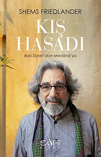 kis hasadi dylan book in Turkish