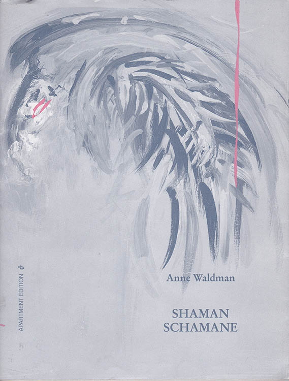 shaman shamane bob dylan book in German