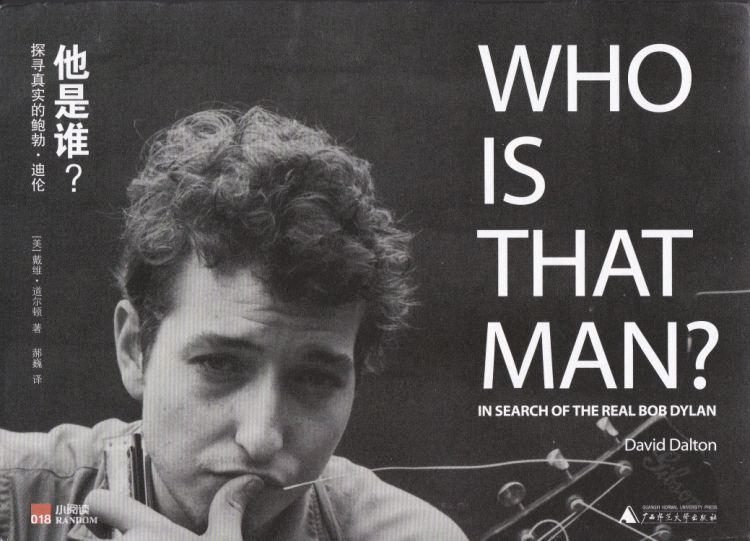 who is that man Dylan book in Chinese