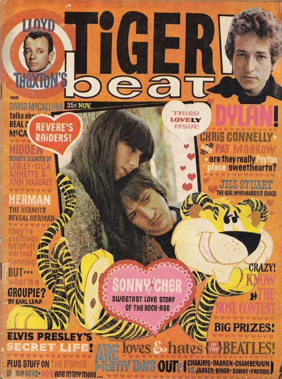 tiger bear usa magazine Bob Dylan cover story